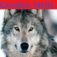 Gordon_Hells
